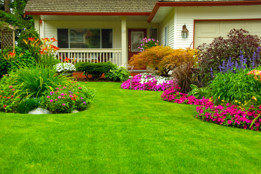 Landscape design services Chennai|Garden design|Flowering plants